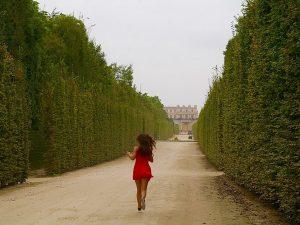 Qué ver en PARÍS – Versailles y Montmartre