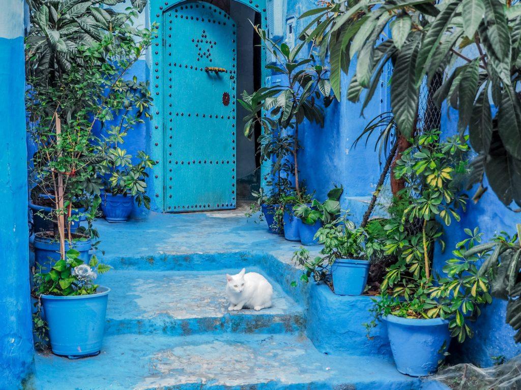 Itinerario y presupuesto para MARRUECOS en 6 días