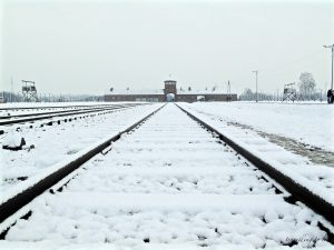 10 días para descubrir POLONIA – Auschwitz (parte IV)