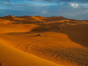 Excursión al Desierto del SAHARA en 3 días