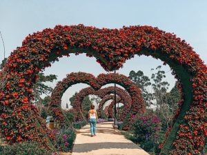 Sur de VIETNAM en 15 días: Itinerario y presupuesto