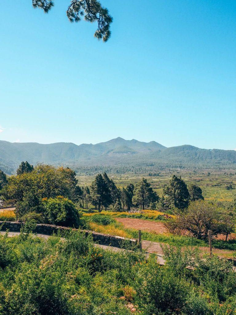 Vistas desde la Ermita de la Virgen del Pino