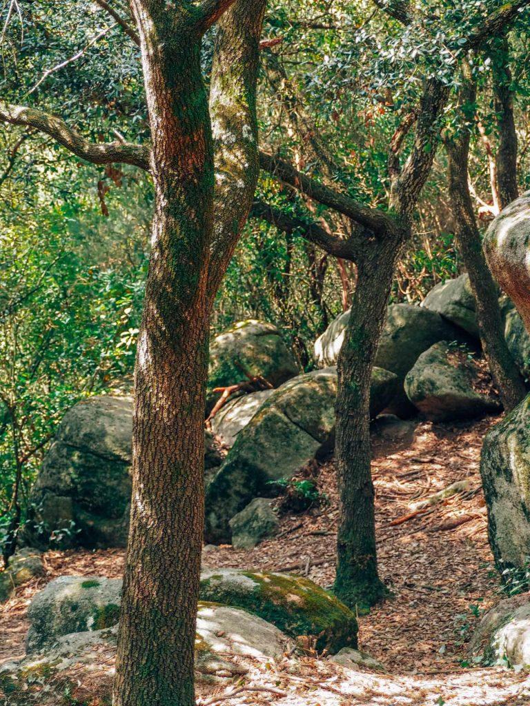 Qué ver y hacer en La Roca del Vallès en 1 día