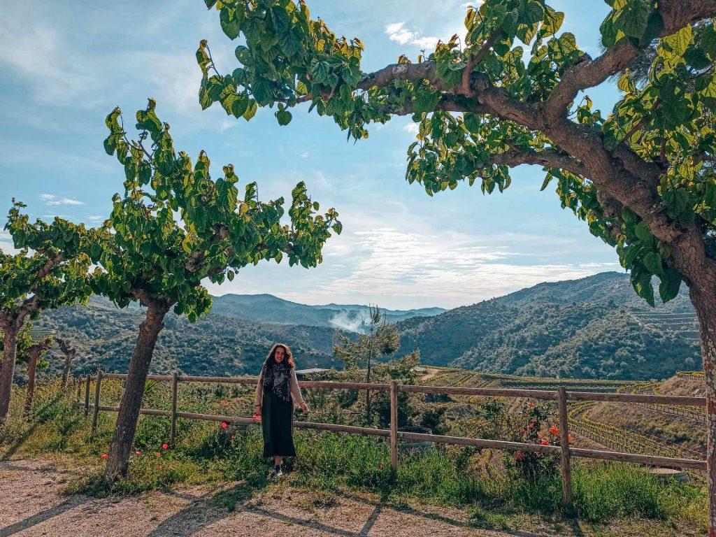 Viñedos de La Vilella Baixa, el Priorat