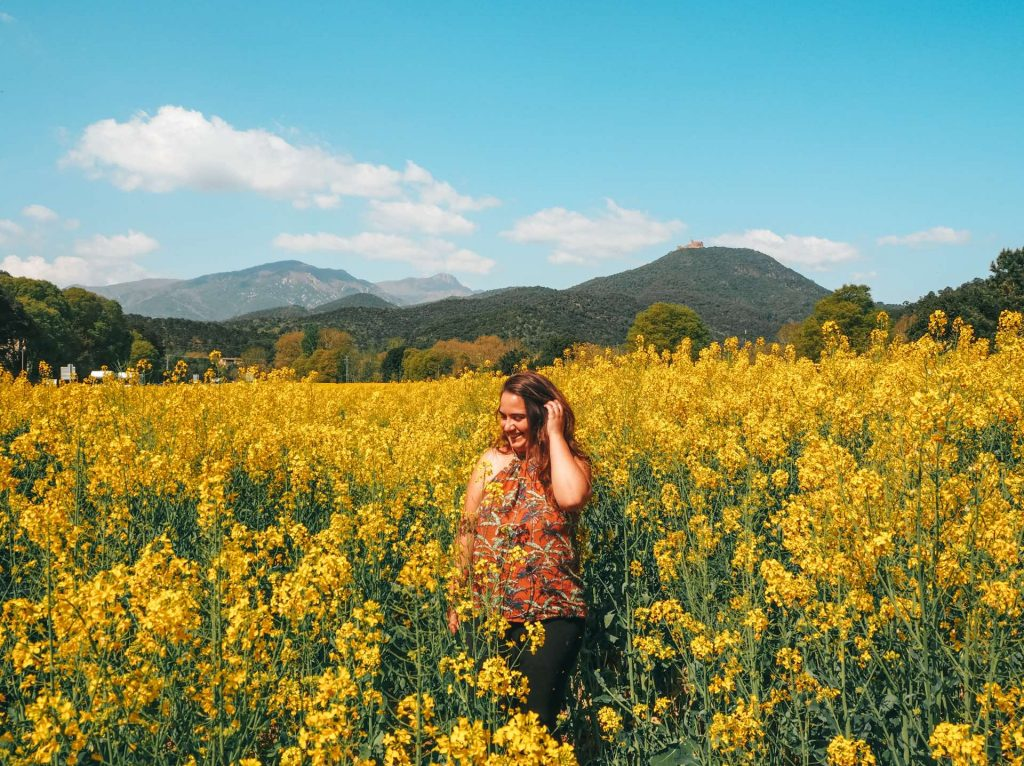Campos de Colza en los alrededores de Arbúcies